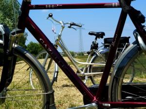 fietsverhuur b&b 108
